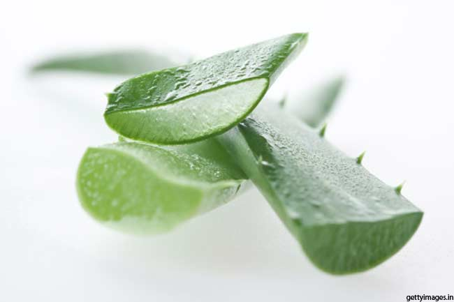 The all time effective herb, aloe vera