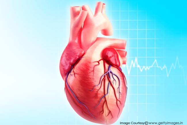 how to take heart beats per minute