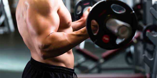 Does Strength Training Help you Gain Weight