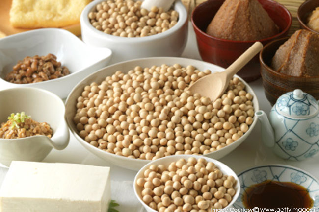 Soy Foods