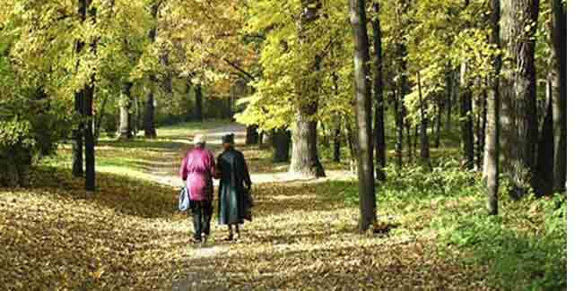 A Walk in the Park Every Day Cuts Breast Cancer Risk in Older Women