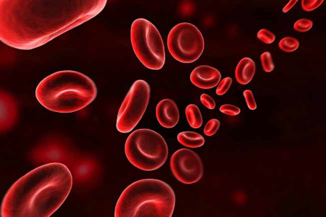 Damage to White and Red Blood Cells