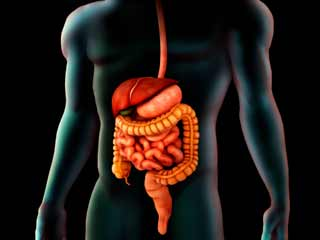 Things about Your Colon that You Should Know