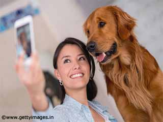 Relationship Between Household Staffs and Pets