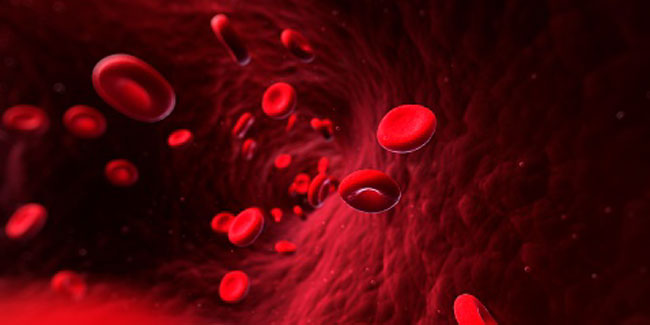 What is Von Willebrand Disease?