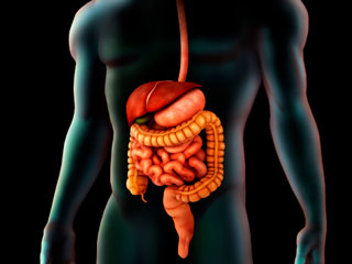 Points to Remember:Short Bowel Syndrome