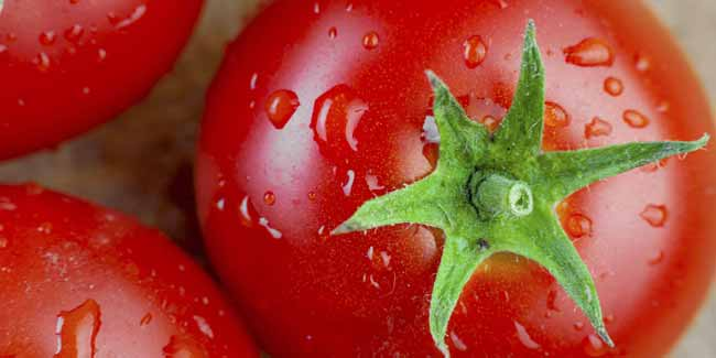 Cooked Tomatoes may cut Heart Disease Risk