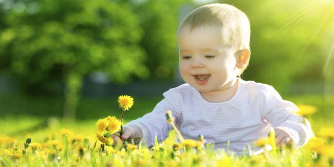 Understand the Importance of Vitamin D for a Baby