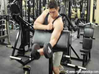 Biceps Exercise - <strong>Barbell</strong> Preacher <strong>Curl</strong>