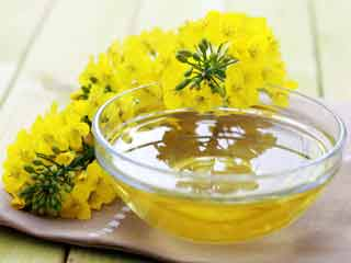 Important facts to know about canola oil