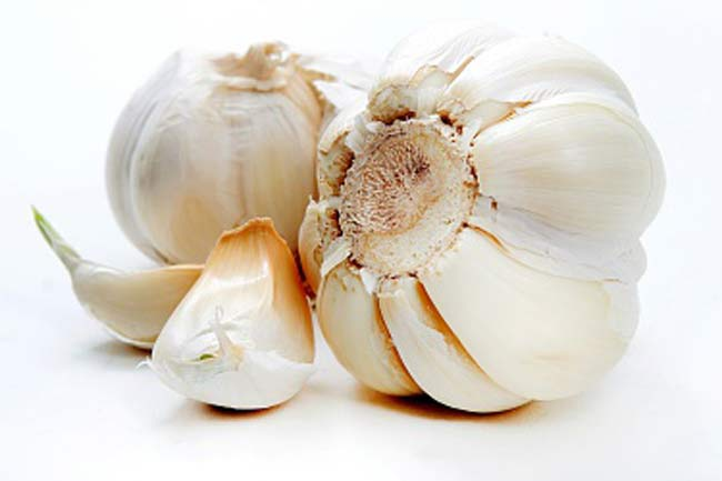 Garlic for treating