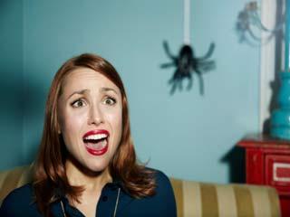 जब मकड़ी काटे तो ऐसे करें उपचार