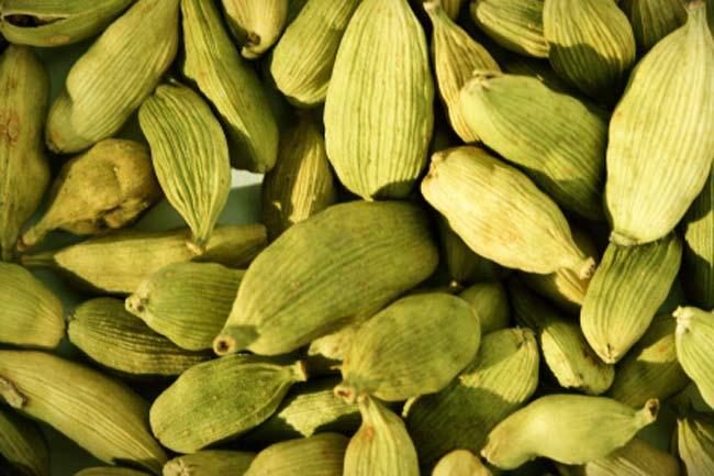 Cardamom for hiccups