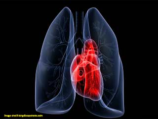 Home <strong>Remedies</strong> for Lung problems
