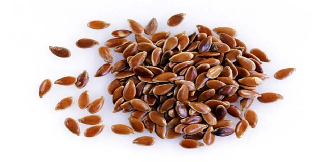 linseed seeds