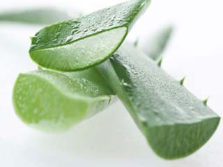 Benefits of aloe vera for skin, digestion and more