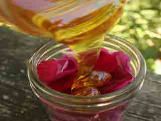 Rose Infused Lip Repairing Balm for Petal Smooth, Soft Pink Lips