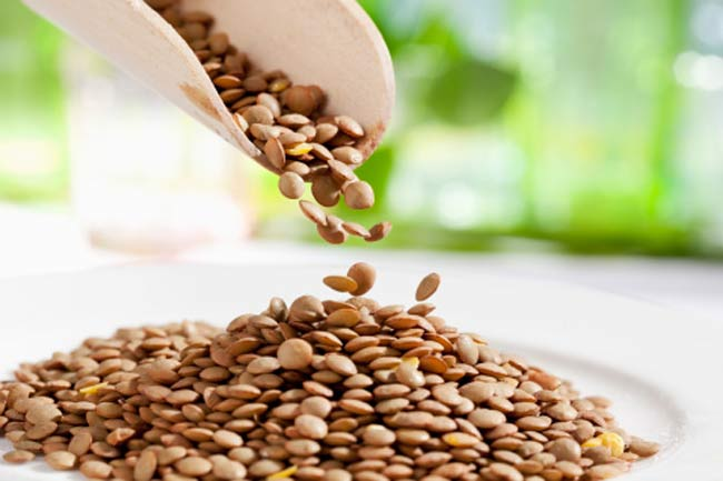 Lentils to reduce dementia risk