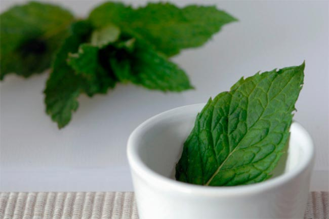 Peppermint for irritable bowel syndrome