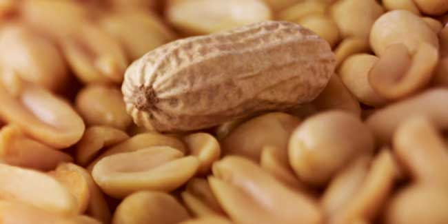 Now,reach out for peanuts if you have a weight loss goal in mind
