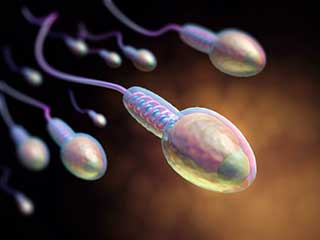 Exercise regularly to improve sperm quality