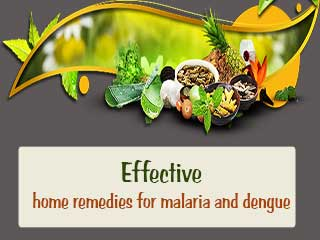 Effective home remedies for <strong>malaria</strong> and dengue