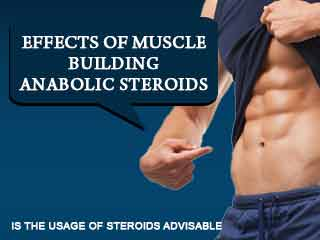 Effects of muscle building anabolic steroids – Is the usage of steroids advisable