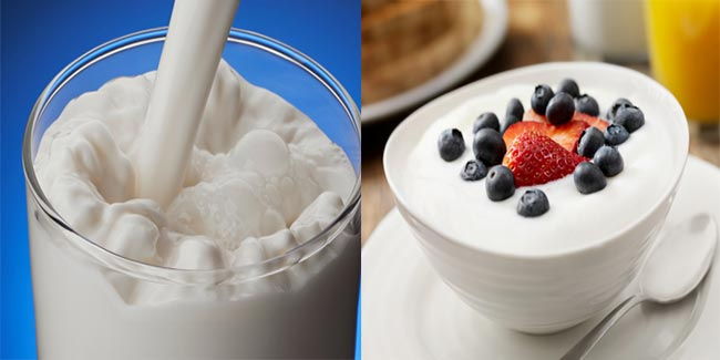 Is curd healthier than milk?