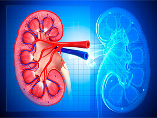 Causes of low creatinine levels and high creatinine levels
