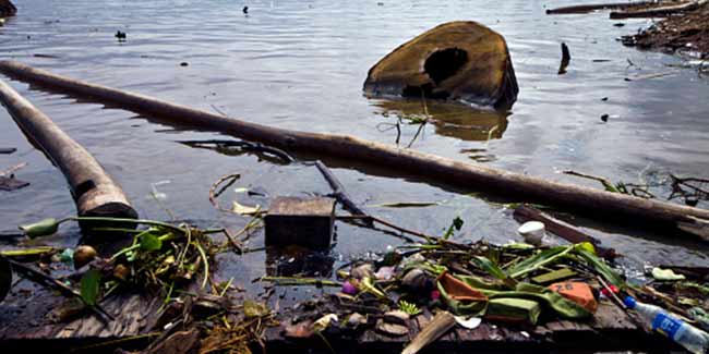Impact of water pollution on human health