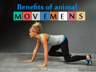 Benefits of animal movements