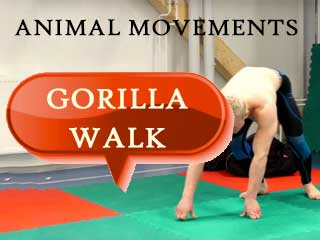 Animal movements fitness gorilla walk