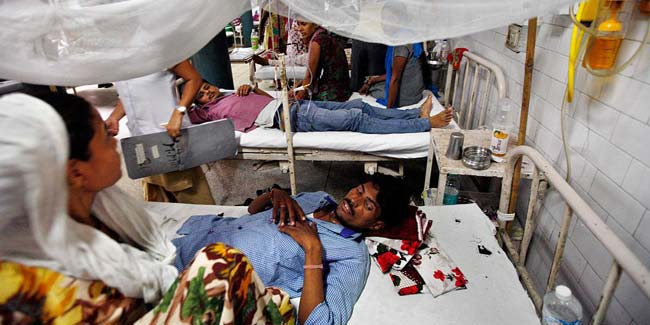 After Delhi-NCR outbreak, Chikungunya and dengue cases up in villages