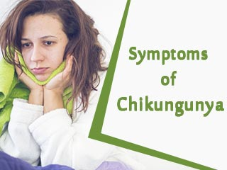Symptoms of chikungunya