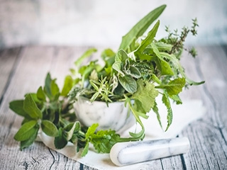 <strong>Herbs</strong> that Help you Control your Diabetes