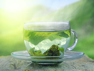 <strong>Green</strong> <strong>tea</strong> may help people with bone-marrow disorders, says new study