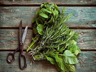 Herbs that can help you gain weight