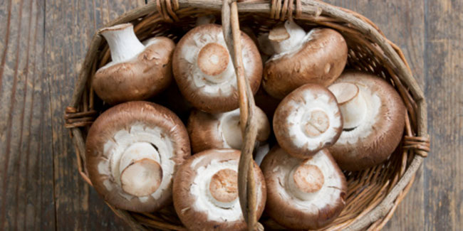 Mushrooms could be the new anti-Alzheimer's superfood, believe scientists