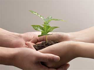 5 super easy, healthy and <strong>environment</strong>-<strong>friendly</strong> <strong>swaps</strong>