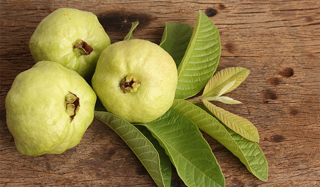 5 reasons why diabetics must add guava to their diet