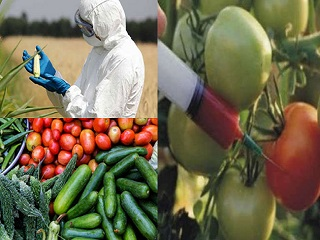 Harmful Effects of Pesticides in Fruits and Vegetables