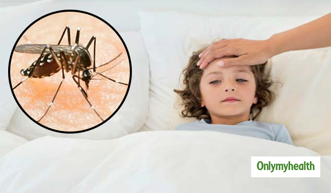 What to Do When you have Dengue