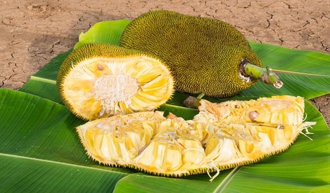 Side Effects Of Eating Excess Jackfruit In Hindi | स्वस्थ आहार