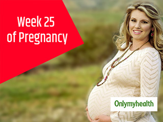 Pregnancy Week 25 - Pregnancy Week by Week Development