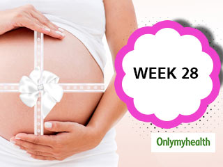 Pregnancy Week 28 - Pregnancy Week by Week Development