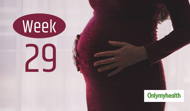 Pregnancy Week Twenty-nine: Pregnancy Week by Week Development