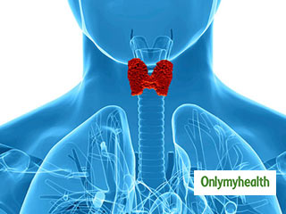 Know the Symptoms of <strong>Hypothyroidism</strong>