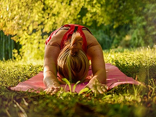 From <strong>Yoga</strong> Asanas to Diet: Here's How Practising It Would Bring Positive Changes to Your Life