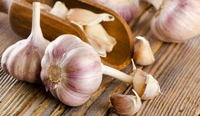 Health Benefits of Garlic you Must Know