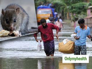 Kerala floods: Number of deaths due to rat fever on a rise